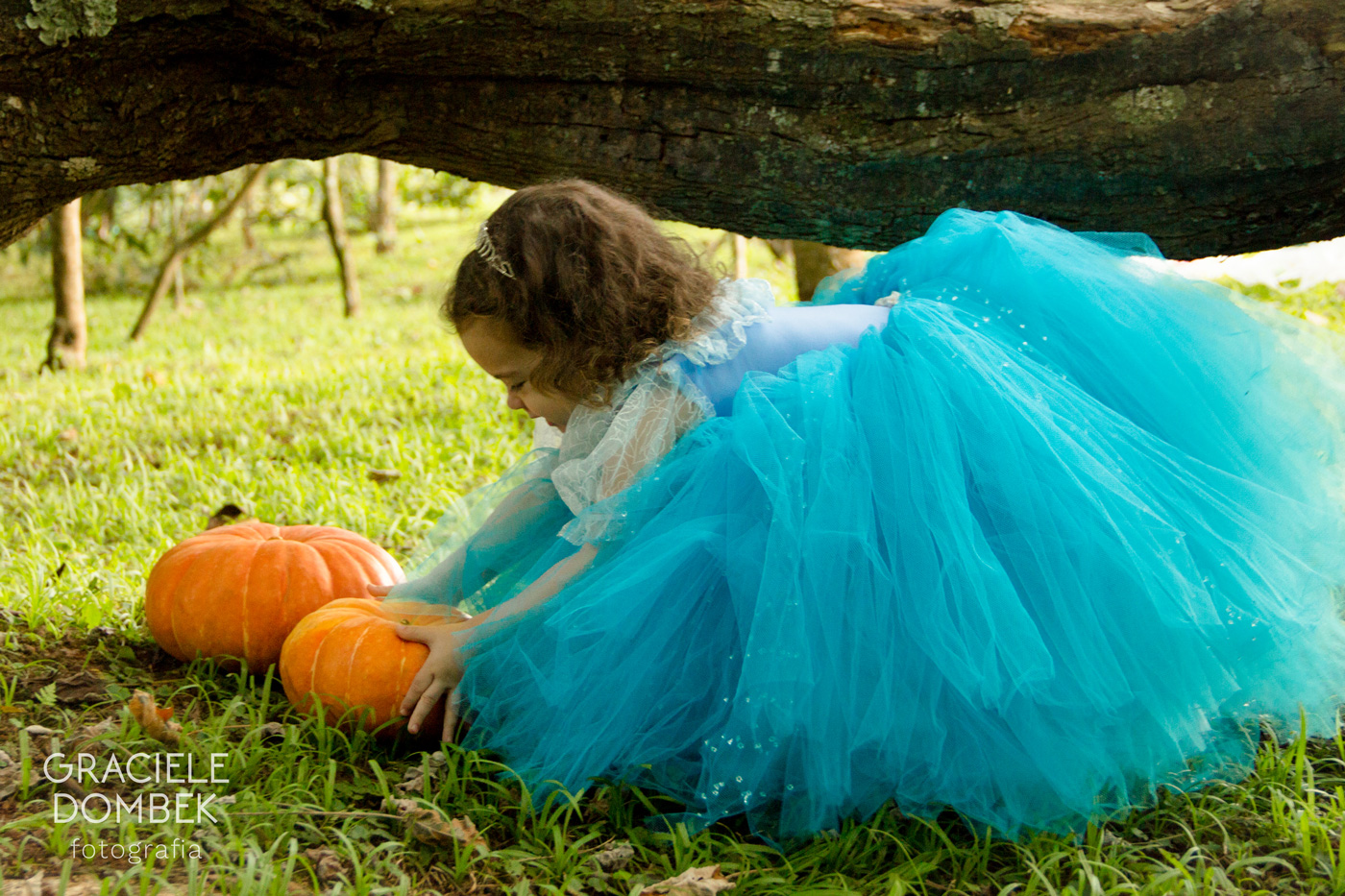 Ensaio de Princesas - Cinderela - Alice 09